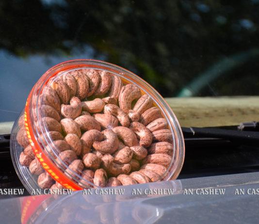 Hạt điều rang muối hạt cồ của An Cashew